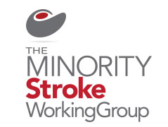 Minority Stroke Working Group